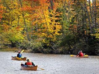 Kayakers and canoers enjoy foliage along the Androscoggin
