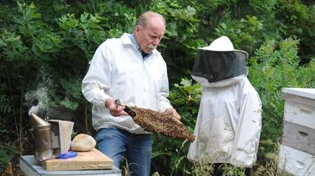 NORTHPORT, NY--June 14, 2010--Beekeeper, Rich Blohm, left, shows