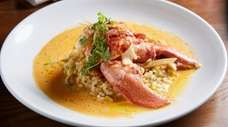 Butter-poached lobster with caramelized fennel and corn-and-tomato risotto