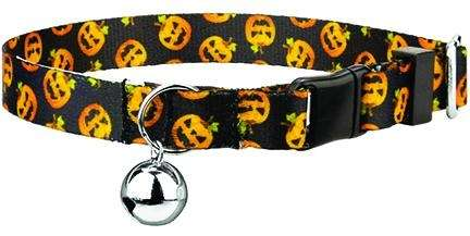 Add some spooky flair to your pet with