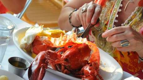 A diner digs into a lobster dinner at