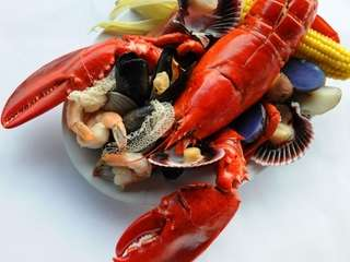 Lobster is among the many shellfish options at