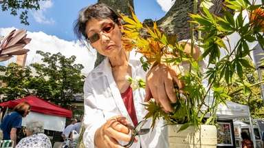 Yoshie Takahashi, a four-decade practitioner of Ikebana, creates