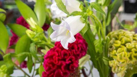 Moribana, one of the styles of ikebana flower