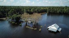 A North Carolina farm is flooded next to