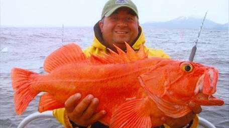 Nader Gebrin with a big orange fish