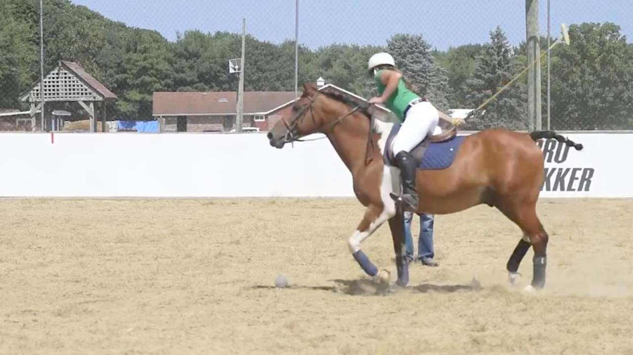 Robert Ceparano, owner of Country Farms Polo &