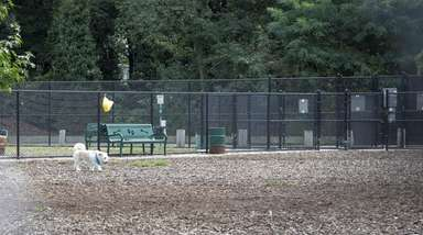 The Oyster Bay Town dog park in East