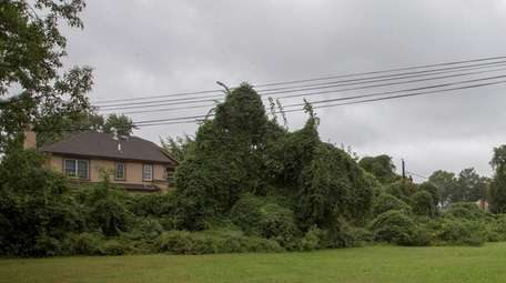 Property on Terrehans Lane in Syosset is protected
