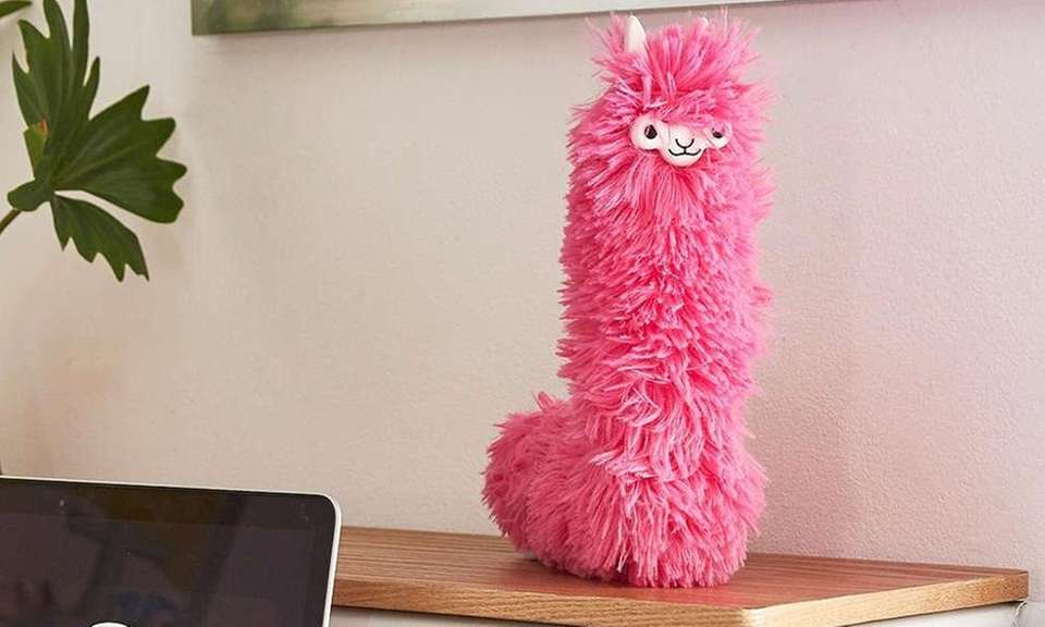 Keeping clean never looked so good. This llama