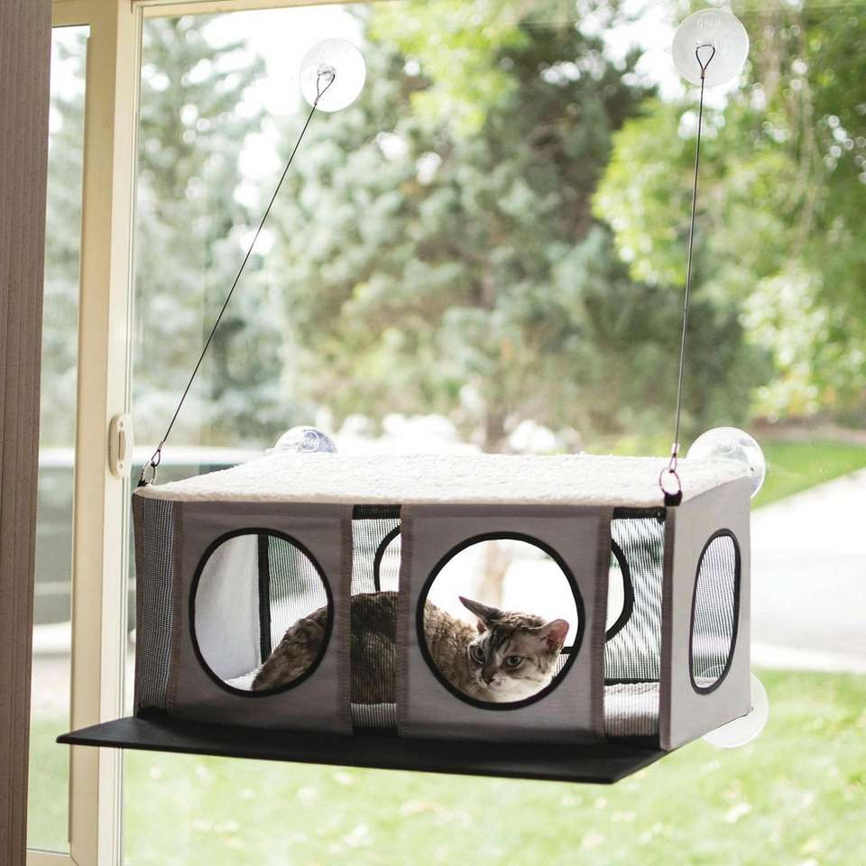 Turn any window into a cat oasis with