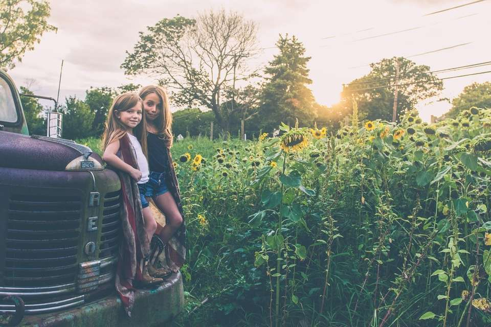 Best Friends at the sunflower field