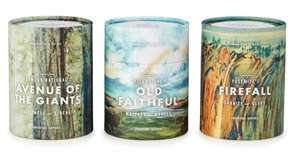 These candles capture the essence of Redwood, Yellowstone