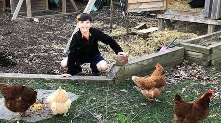Kidsday reporter Brady Dolan with his family chickens.
