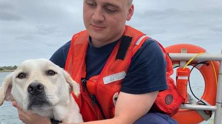 Seaman Tristan Beatty with Pepper after the rescue