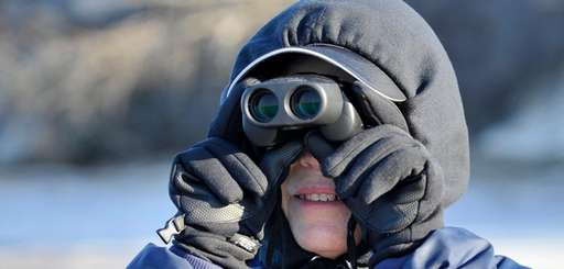 Tina Melkin of Woodbury searches for seals in