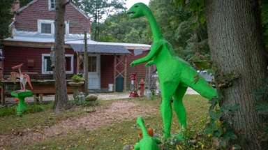 Dinosaurs and other creatures roam around a home