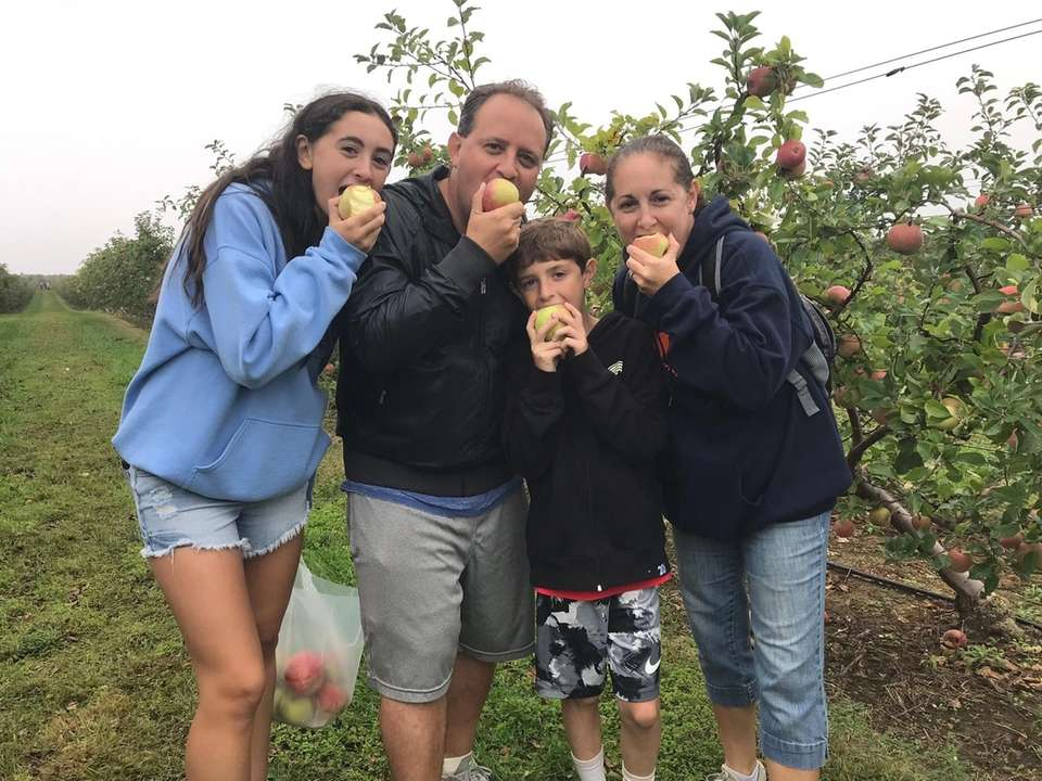 Apple picking at Milk Pail in watermill,ny