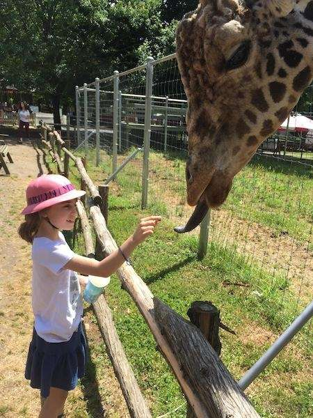 Kacey feeding a giraffe at the Long Island