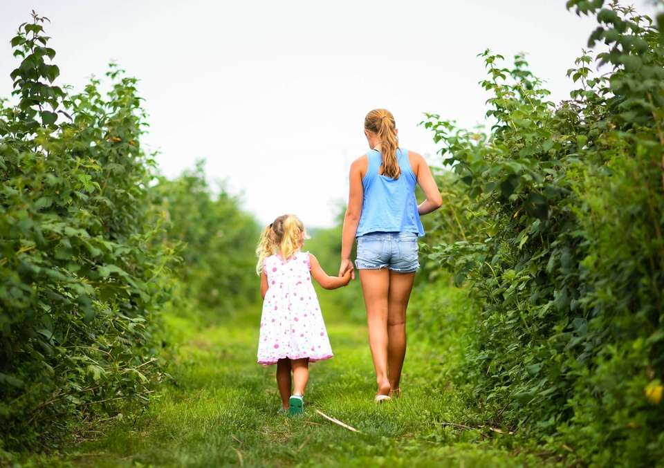 My daughter Ottilie and Oceana picking berries at