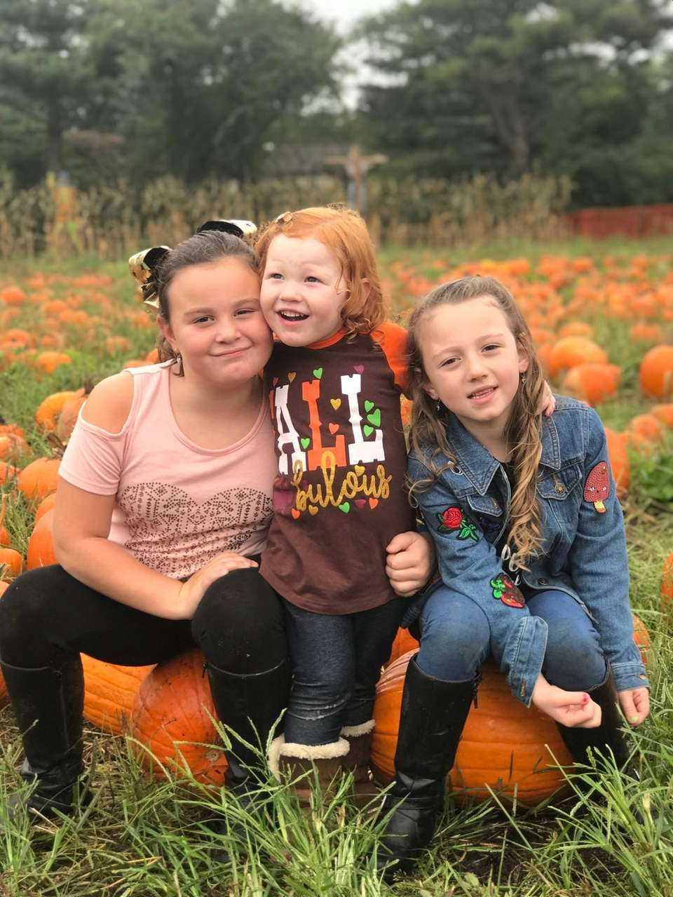 Pumpkin Picking at Brightwater Farm in Bay Shore