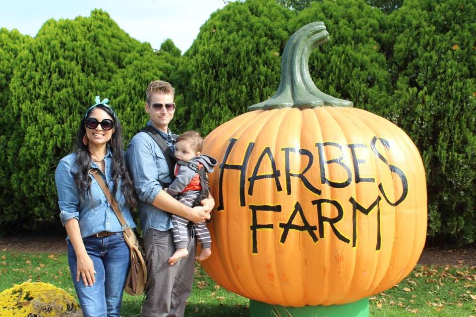 Our very first family pumpkin picking trip!