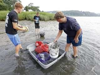 MT. SINAI HARBOR, NY, July 23, 2010: Clamming