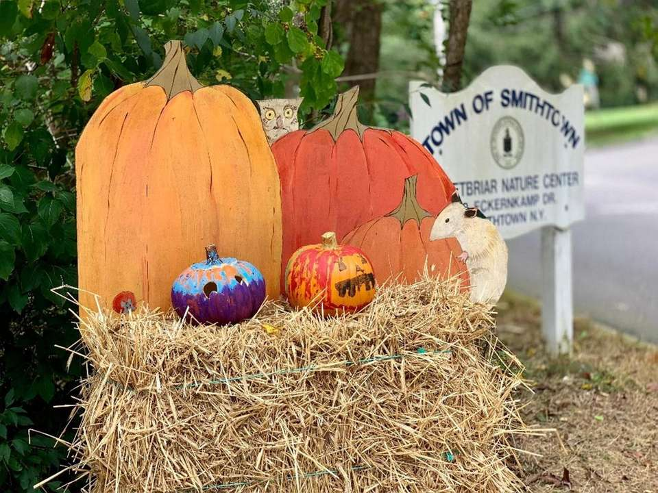 Sweetbriar's Halloween Spooktacular takes place on Oct. 19,