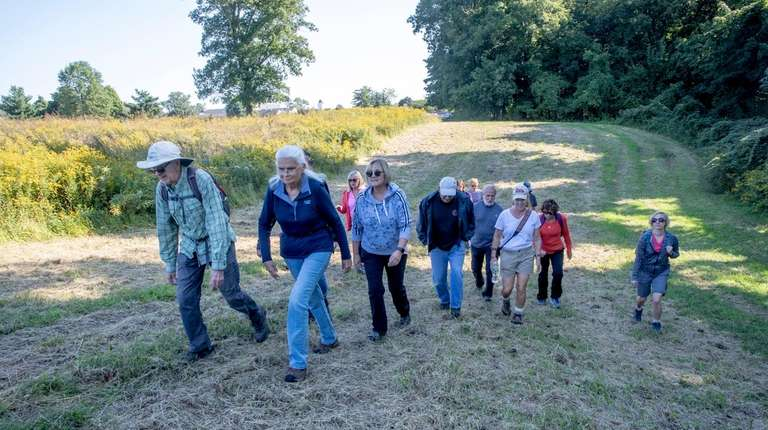 Hikers trek uphill in a partly mowed field