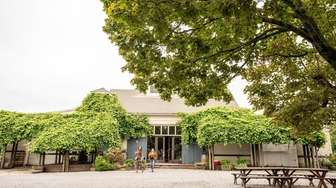 Lenz Winery in Peconic on Sept. 13.
