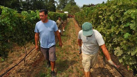 Winemaker Peter Pugliese, left, inspects the progress of
