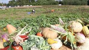 Island Harvest on Tuesday celebrated with a ribbon-cutting