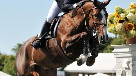 McLain Ward, riding Sapphire, won the Hampton Classic