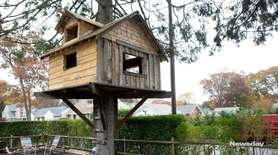 John Lepper, of Babylon, built a tree house