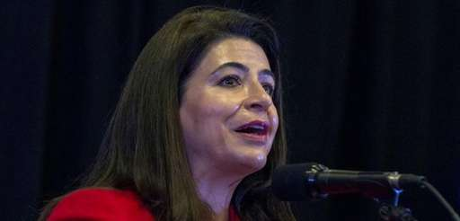 Democrat Anna Kaplan announces her candidacy for New