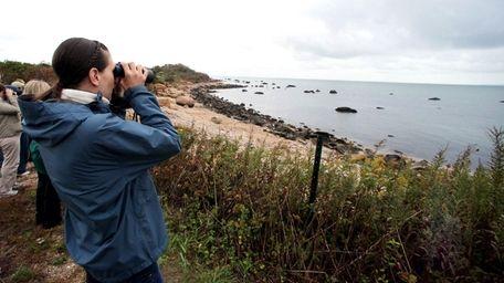 Visitors gaze at the shoreline on Plum Island.