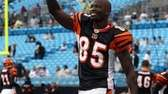 Chad Ochocinco #85 of the Cincinnati Bengals waves