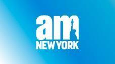 amNY holding image