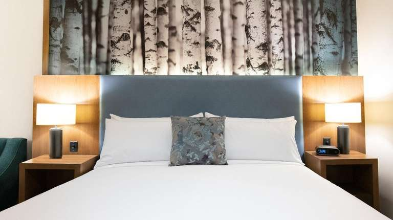 A guest room at the new Alder Hotel