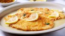 Chicken francese at Patrizia's has a delicate, eggy