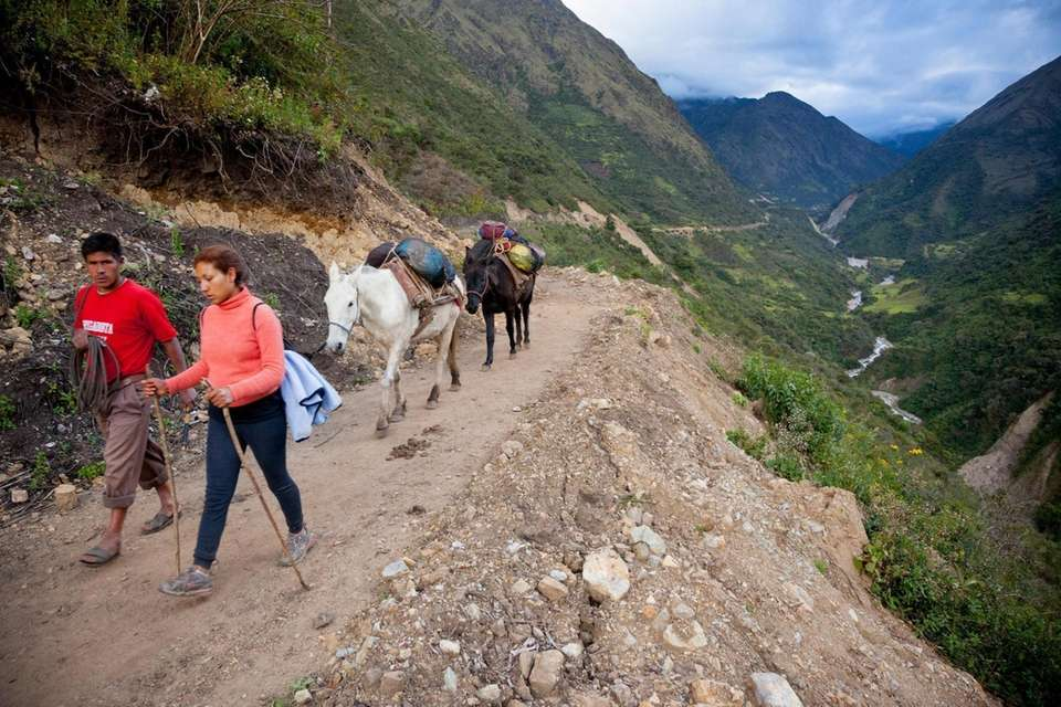 Arriero (muleskinner), pack mules and trek guide on