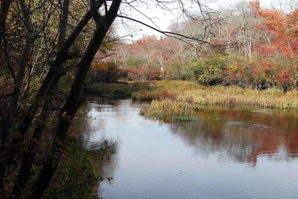 A view of the Carmans River. (Oct. 20,