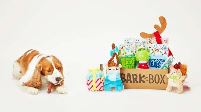 Surprise your pet this holiday season with The