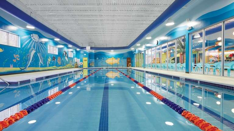 goldfish swim school opening in centereach newsday