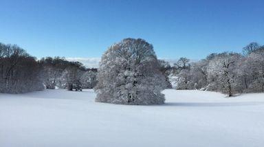 WHERE Caumsett State Historic Park Preserve, 25 Lloyd