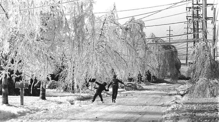 This is what Greenlawn looked like after an