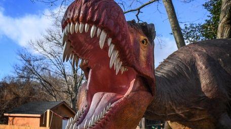 A Tyrannosaurus Rex on display at the Dinosaurs!