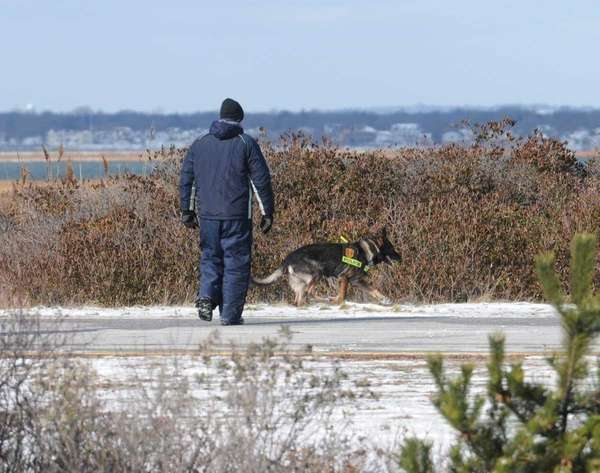 The Suffolk County police K-9 unit searches wooded