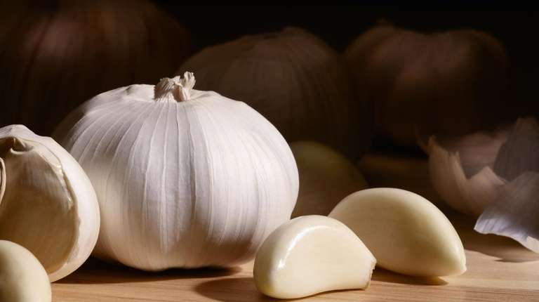 Some experts believe garlic extracts can help our