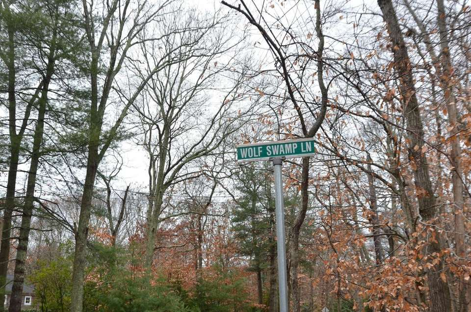 Though Wolf Swamp Lane in Southampton doesn't appear